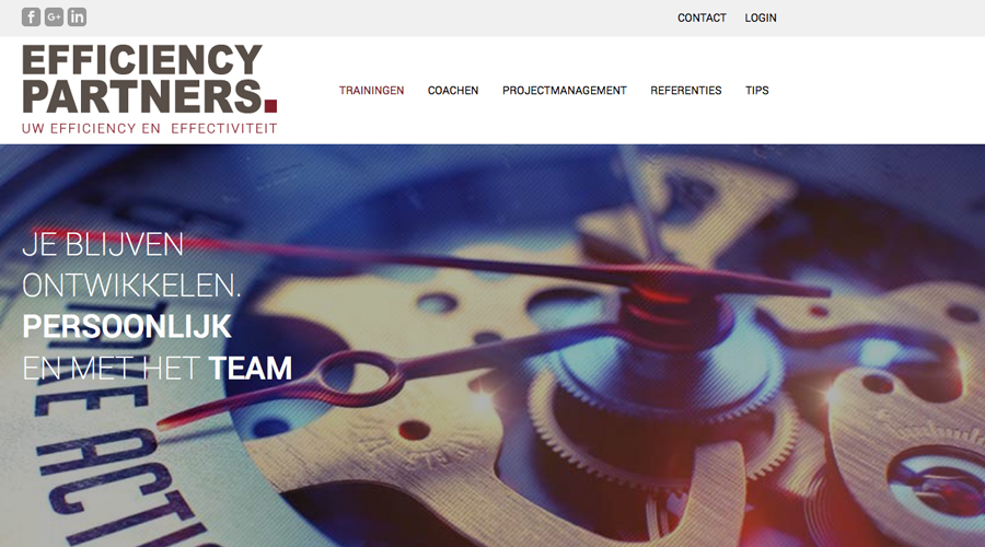 Website Efficiency Partners